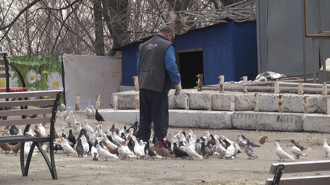 Ульяновские парки готовятся к открытию сезона