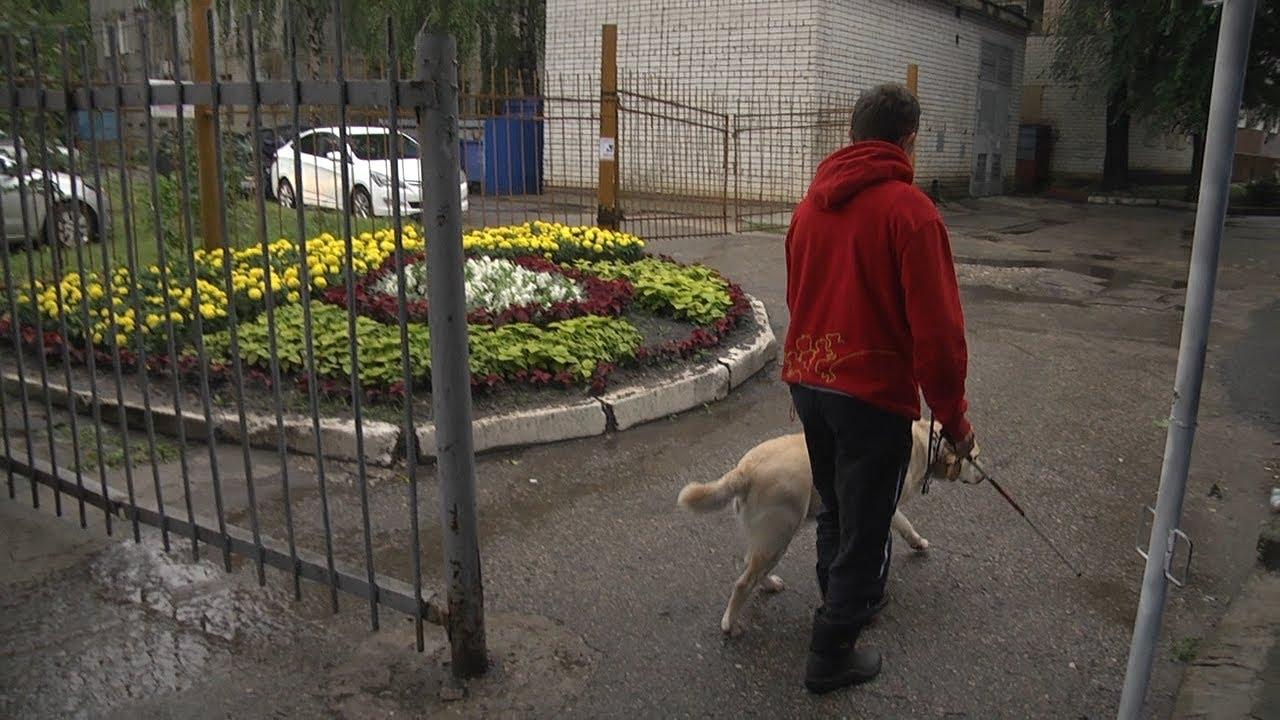 «Будь здоров» с новыми рубриками. Собаки-поводыри и их хозяева