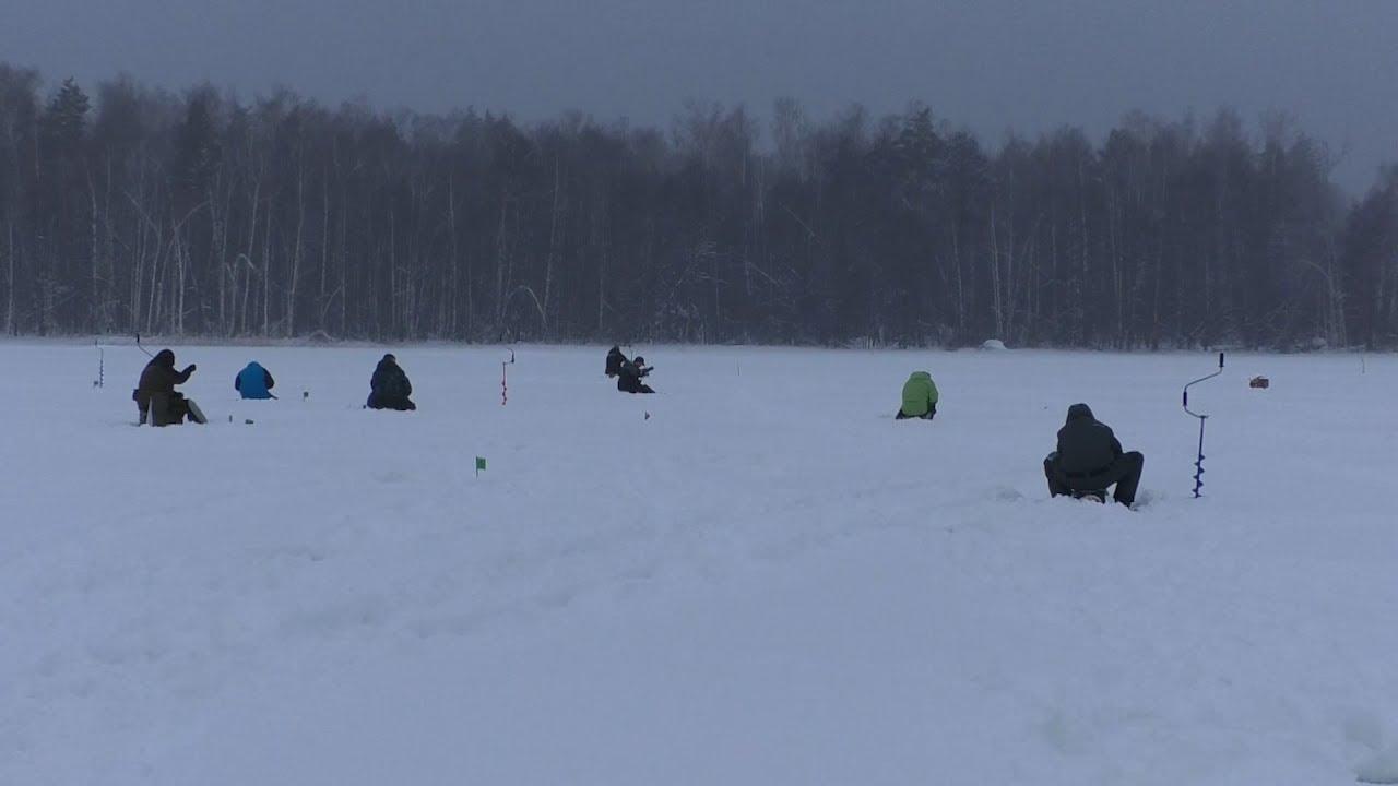 В Димитровграде прошёл региональный чемпионат по ловле рыбы со льда